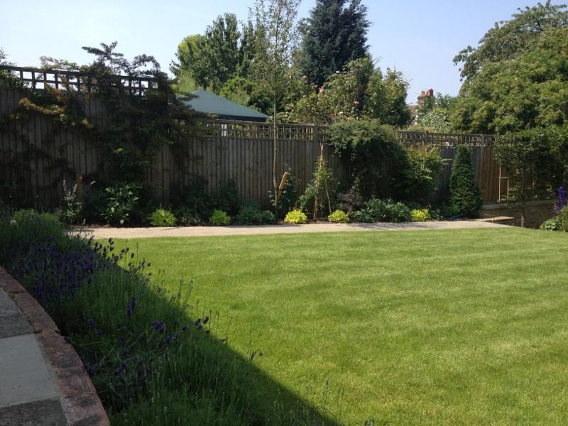 Large London Garden - Dawn Garden Design