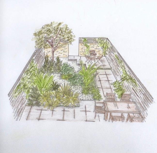 Modern Garden - Dawn Garden Design